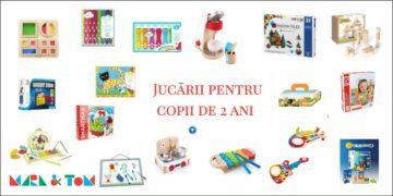 Jocuri și jucarii pentru copii de 2 ani